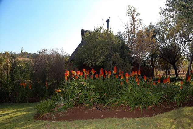 Bed And Breakfast In Magaliesburg South Africa