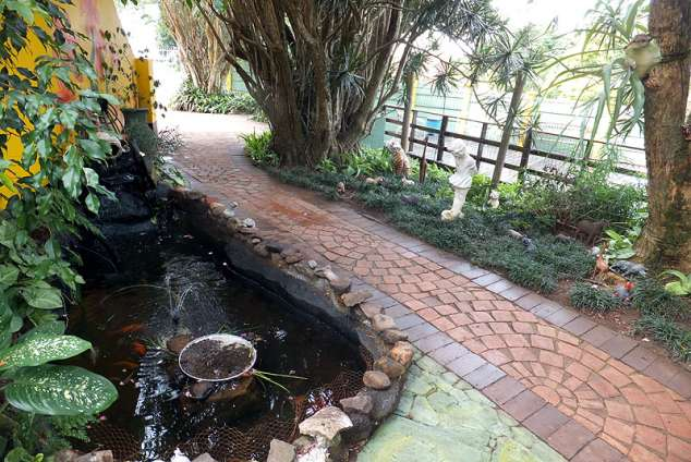 Queensburgh bed breakfast queensburgh accommodation for Koi ponds durban