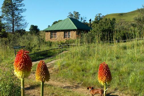 1/19 - HONEYGUIDE COTTAGE Sani Pass Self Catering Cottage Accommodation
