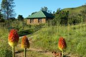 Honeyguide Cottage and Aloe Cottage