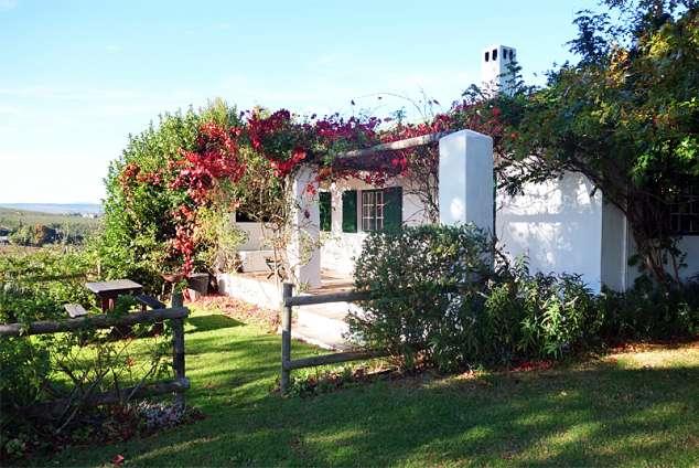 1/17 - Lavender 1 cottage