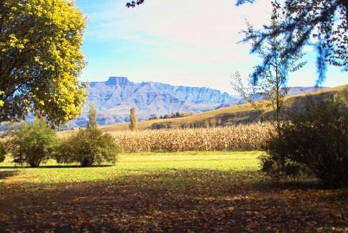1/8 - Berg View Site - Camping Accommodation in Central Drakensberg