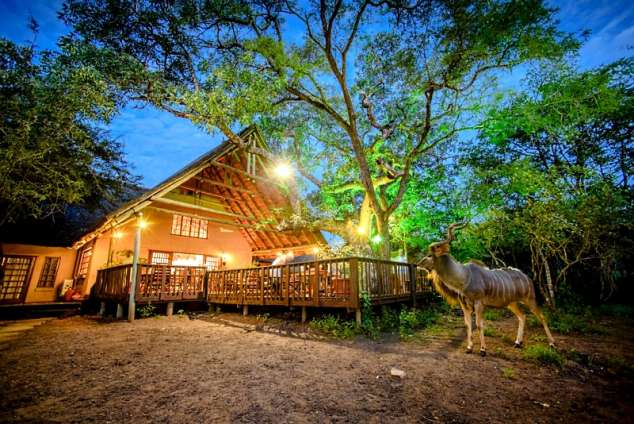 1/33 - Lodge from Boma with kudu