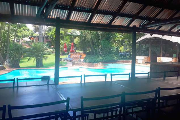 1/31 - Swimming Pool by the Lapa