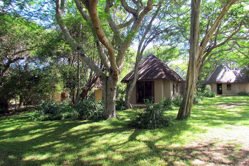 1/8 - Umziki Pan - a haven in the heart of Zululand