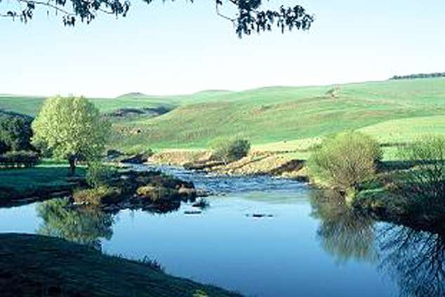 1/20 - Morning River View - Self Catering Cottage Accommodation in Underberg, Drakensberg
