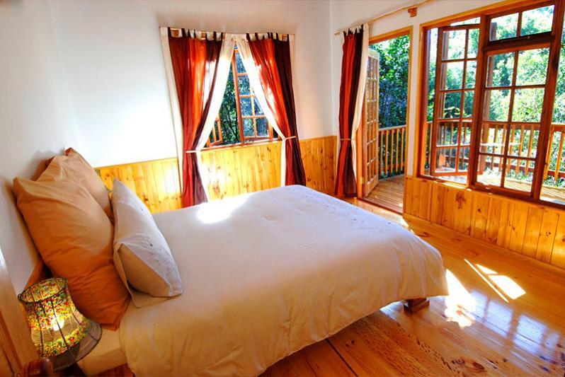 Vervet Forest Cabin - main bedroom