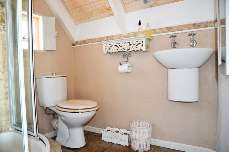 Toilet and shower.