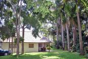 Pongola Tropical