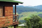 Midlands Forest Lodge