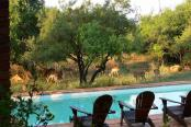 Segaia Bush Lodge