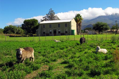 View of Waterkloof Guest Farm