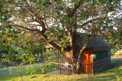 Amangwane Camp