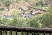 Klipkuile River Bush Camp