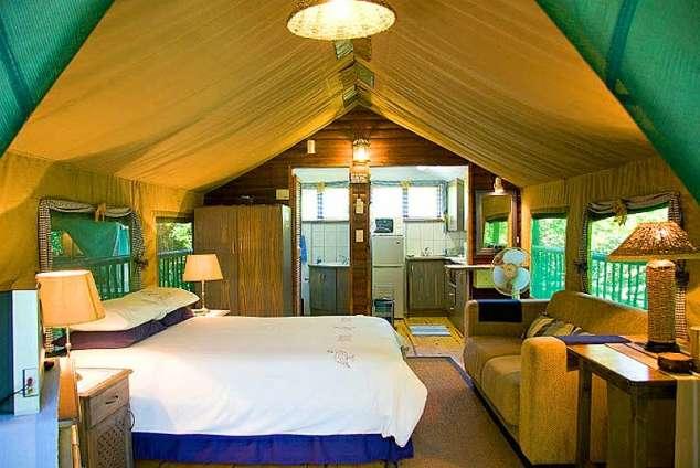 Thandulula Luxury Safari Tent Accommodation - Southport Accommodation. Southport Self Catering House Cottage Chalet Accommodation & Thandulula Luxury Safari Tent Accommodation - Southport ...