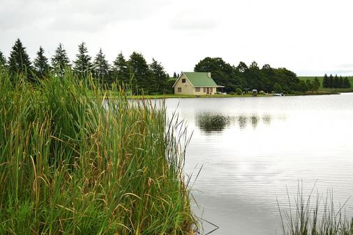 1/15 - Cottage on Lake Zonk - Mooi River Self Catering Cottage Accommodation