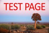 BARNEY BILLS TEST PAGE