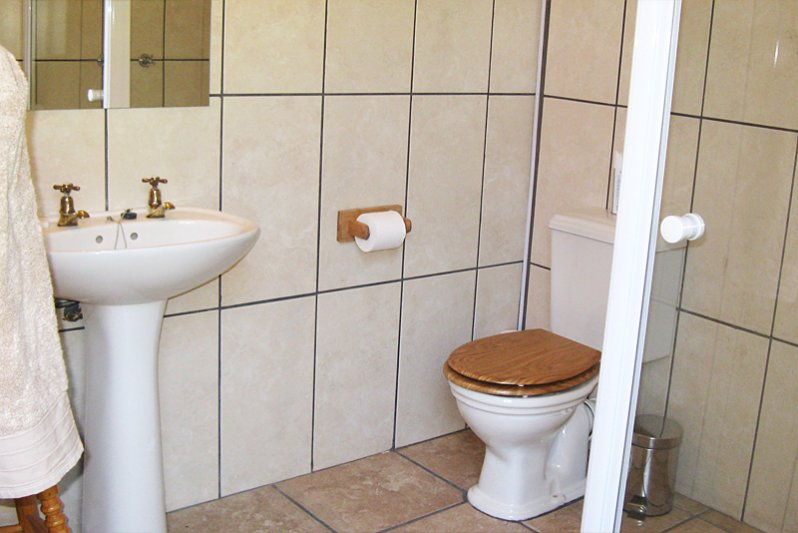 Homestead - en-suite bathroom