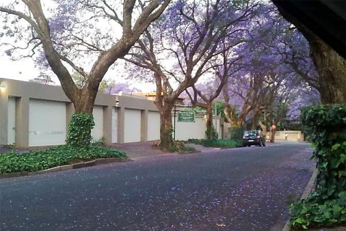 View of Rosebank Lodge Guest House