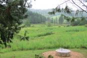 Pinella Farm Cottage