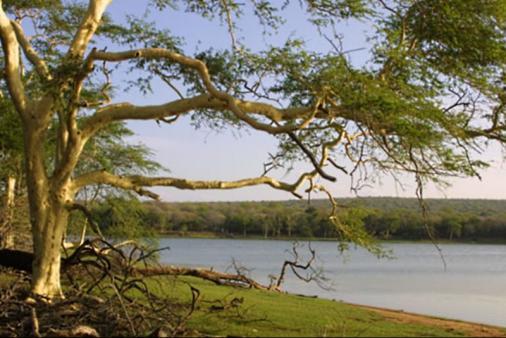 1/7 - Ndumo Game Reserve - Zululand & Maputuland, KwaZulu Natal