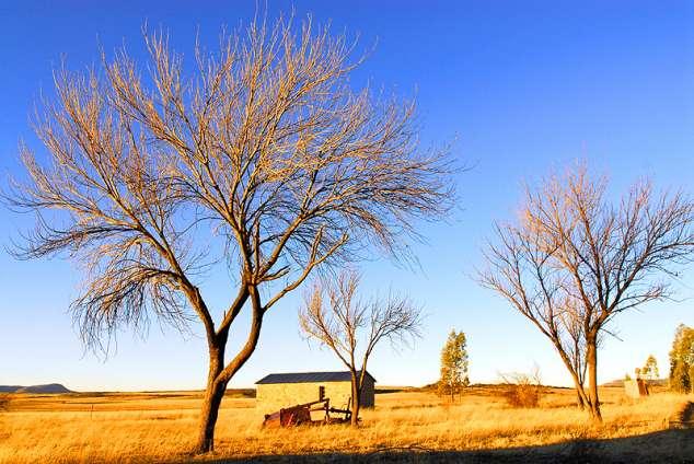 1/20 - Lady Grey Guest Farm accommodation