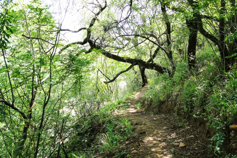 River walk & cycle trail on the property ( 11km )