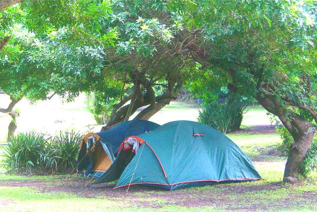 1/14 - Caravan and camping in Shelly Beach