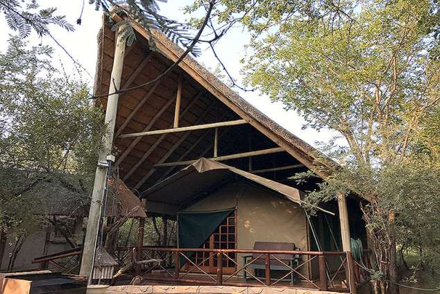 1/20 - Acacia - Family Tent