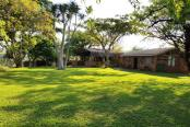Cussonia Private Game Ranch