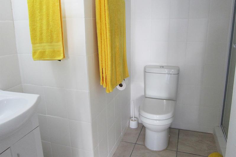 ELAINE bathroom with shower