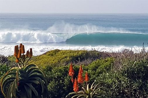 1/25 - This photo was taken from the verandah in June 2019. The perfect wave!