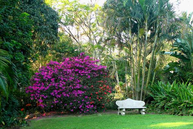1/21 - Butterscotch B&B and Self Catering accommodation - Cowies Hill / Pinetown